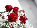 Cum sa prelungesti durata de viata a buchetelor de trandafiri rosii