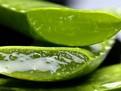 9 beneficii oferite de Aloe Vera pentru sanatate
