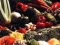 vegetalele sunt un aliat in lupta impotriva cancerului