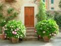Ce sa alegi intre casa la gri, la rosu sau la alb