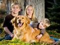 De ce copilul tau are nevoie de un animal de companie,copiii si animalele de companie, copiii si cainii, copiii si pisicile, catei si copii, pisicute si copii