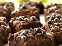 negrese cu lichior si cafea, retete negrese, negrese lipicioase, desert pentru Craciun, retete de prajituri