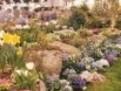Pregatirea gradinii si a florilor pentru iarna