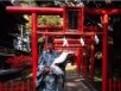 shinto, shintoism, preoti shinto, templu, kami, zeitati japoneze, japonia