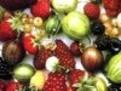 tabel calorii fructe, cate calorii au fructele